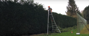 Henchman 12 Foot Ladder