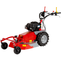 Meccanica Benassi RF630 Field & Brush Mower